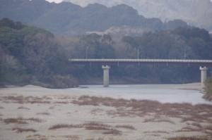 内城田大橋(宮川)から望む久具都比賣神社の社叢と久具都比売橋