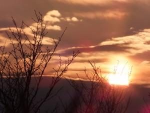 音無山(伊勢市二見町)から望む日の出