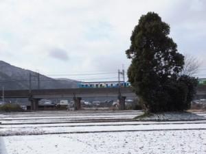 雪の皇女の森と近鉄観光列車つどい