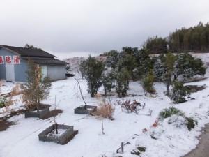 雪の五十鈴川左岸(近鉄五十鈴川橋梁付近)