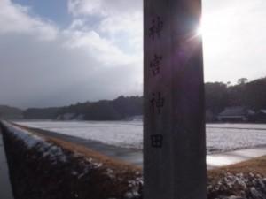 雪の神宮神田