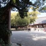 蕃塀脇から望む(01)本宮(熱田神宮)