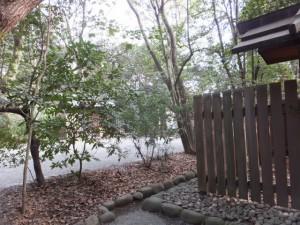 (16)内天神社前から樹木越しに望む(15)大幸田神社(熱田神宮)
