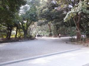 (28)文化殿(宝物館)付近から(34)清雪門方向へ(熱田神宮)