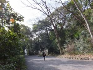 (34)清雪門付近(熱田神宮)