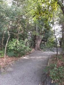 正参道から(43)日割御子神社へ(熱田神宮)