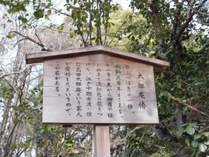 (40)太郎庵椿の説明板(熱田神宮)