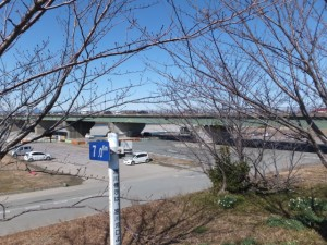 宮川堤(右岸)から望む度会橋