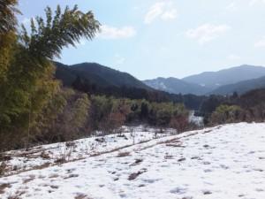 大雪の後の多岐原神社付近
