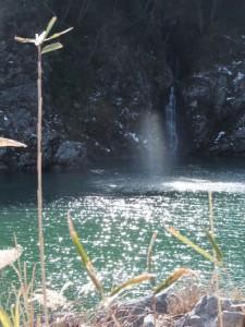 三瀬の渡し付近の滝