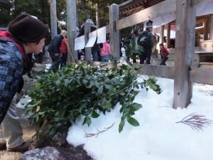 五身懸祭 – 万歳楽神事のために準備された榊(川添神社)