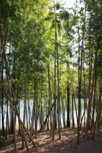 坂手国生神社付近の牛尾崎池