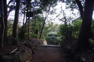 蚊野神社(蚊野御前神社を同座)