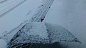 伊勢での大雪(徒歩での出勤時)