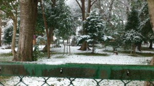 伊勢での大雪、箕曲神社参道から望む境内(徒歩での出勤時)