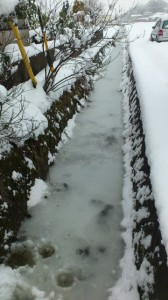 伊勢での大雪(徒歩での早めの退勤時)