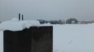 伊勢での大雪、遠望する河原神社の社叢(徒歩での早めの退勤時)