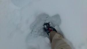 伊勢での大雪(帰宅後)