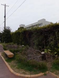 旧・山田赤十字病院付近
