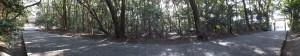 御塩殿神社の参道(左側は御塩殿、右側に車道)