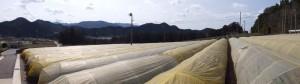 多気郡大台町新田の風景