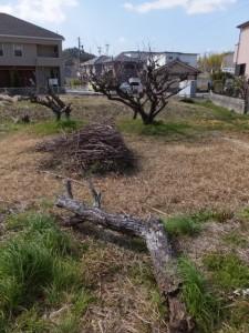 (国道23号 黒瀬町交差点〜加努弥神社)