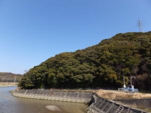 朝熊橋(朝熊川)から望む朝熊神社の社叢