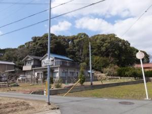 宇治山田神社の社叢、興玉の森