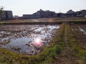 久志本社(伊勢市神久)から河崎へ