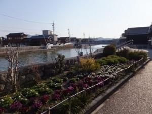 川の駅 河崎前のお花畑