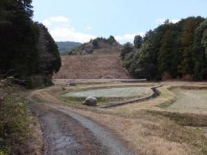鴨神社の参道入り口の竹やぶから伊勢自動車道付近へ