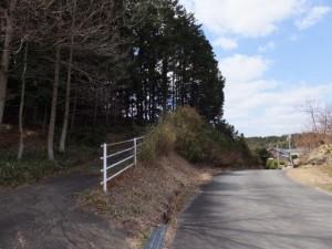 鴨神社から別ルートで山神の里へ下り、参道入り口の竹やぶへ