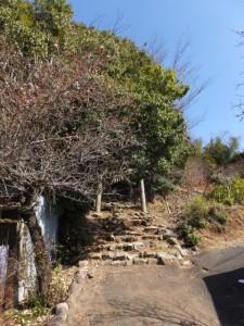 琴平神社(度会郡玉城町宮古)