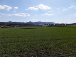 小社神社付近からの風景