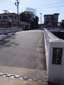 外城田橋(外城田川)から望む狭田国生神社の社叢
