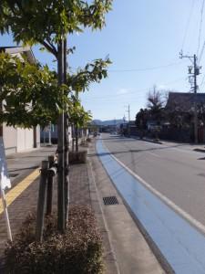 JR参宮線 田丸駅前の道路を田丸駅方向へ