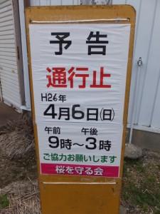 桧尻川(伊勢市)、東町桜まつりのための通行止予告板