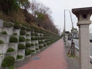 御幸道路(日蓮聖人誓の井戸付近)
