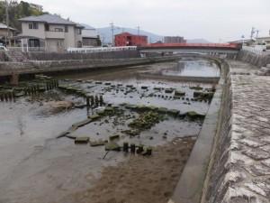 姫之橋付近(勢田川)