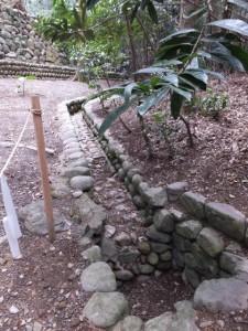 伊我理神社(井中神社を同座)への参道脇にある水路