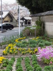 宮崎お花畑から望む旧豊宮崎文庫の門