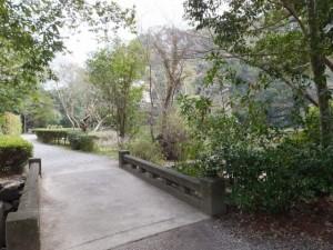 茜社の参道から勾玉池へ