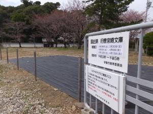 旧豊宮崎文庫一般公開、オヤネザクラ観覧の注意