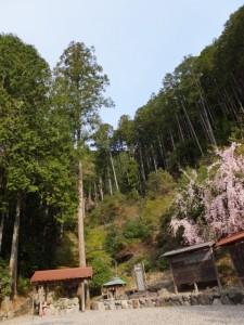 咳の谷公園(大台町)