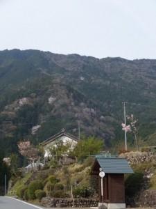 大台町営バス 滝谷バスのりば付近からの風景