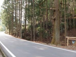 通行止による迂回路の途中にある祠(大台町)