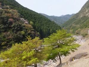 滝水橋からカラスキ谷方向へ(大台町)