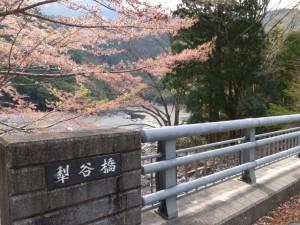犁谷橋(宮川、犁谷出合付近)