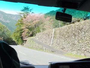 カラスキ谷公園〜大杉桑木谷(大台町)