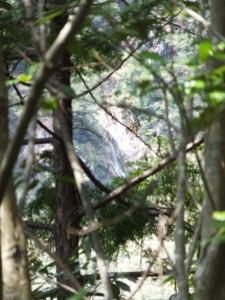 宮川ウォーク、桑木谷〜軍艦島の途中から望む六十尋滝